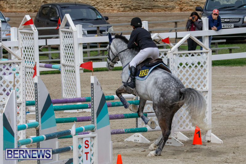 Bermuda-Equestrian-Federation-Stardust-Jumper-Series-February-3-2018-6865