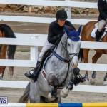 Bermuda Equestrian Federation Stardust Jumper Series, February 3 2018-6869