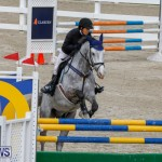 Bermuda Equestrian Federation Stardust Jumper Series, February 3 2018-6872