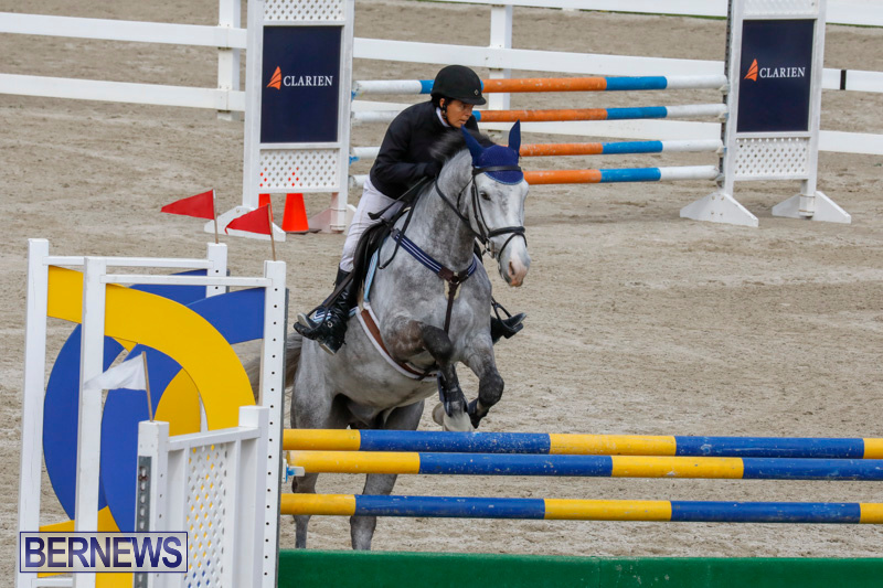 Bermuda-Equestrian-Federation-Stardust-Jumper-Series-February-3-2018-6872