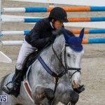 Bermuda Equestrian Federation Stardust Jumper Series, February 3 2018-6873