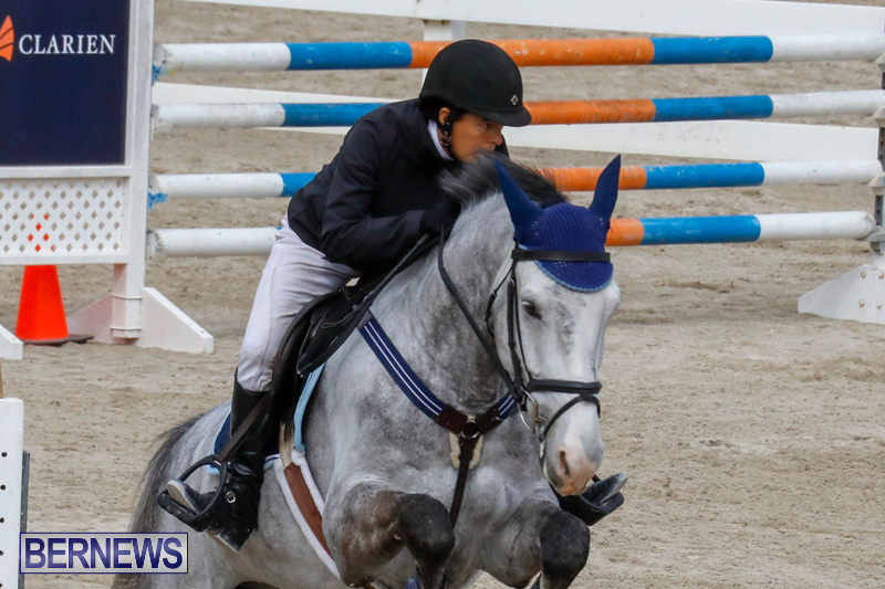 Bermuda-Equestrian-Federation-Stardust-Jumper-Series-February-3-2018-6873