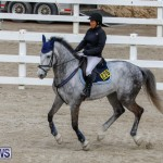 Bermuda Equestrian Federation Stardust Jumper Series, February 3 2018-6879