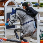 Bermuda Equestrian Federation Stardust Jumper Series, February 3 2018-6880