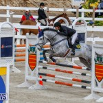 Bermuda Equestrian Federation Stardust Jumper Series, February 3 2018-6881