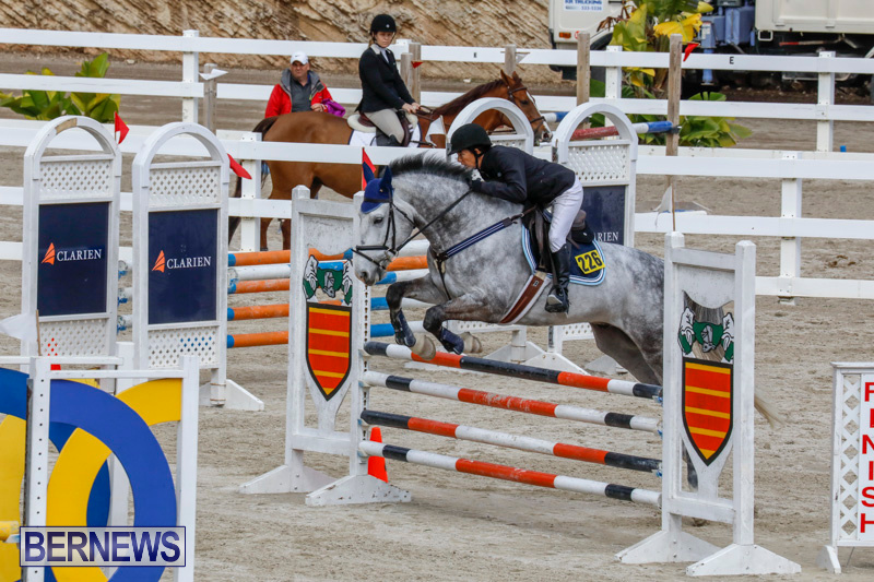 Bermuda-Equestrian-Federation-Stardust-Jumper-Series-February-3-2018-6881