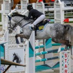 Bermuda Equestrian Federation Stardust Jumper Series, February 3 2018-6886