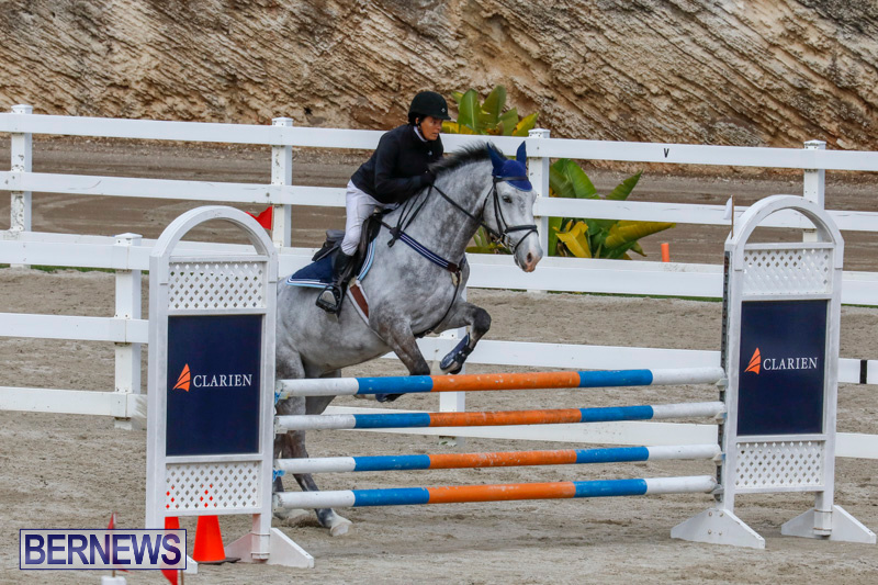 Bermuda-Equestrian-Federation-Stardust-Jumper-Series-February-3-2018-6890