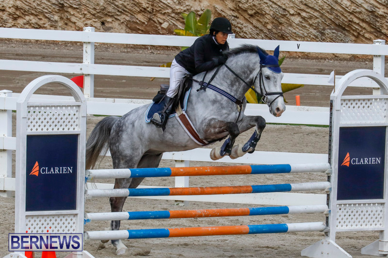Bermuda-Equestrian-Federation-Stardust-Jumper-Series-February-3-2018-6891