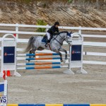 Bermuda Equestrian Federation Stardust Jumper Series, February 3 2018-6892