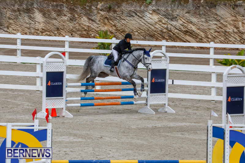 Bermuda-Equestrian-Federation-Stardust-Jumper-Series-February-3-2018-6892