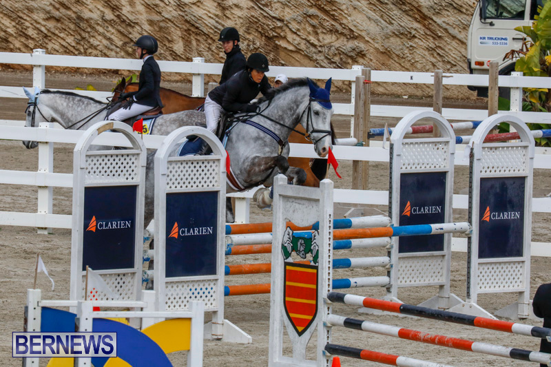 Bermuda-Equestrian-Federation-Stardust-Jumper-Series-February-3-2018-6893