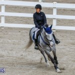 Bermuda Equestrian Federation Stardust Jumper Series, February 3 2018-6896