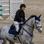Bermuda Equestrian Federation Stardust Jumper Series, February 3 2018-6904