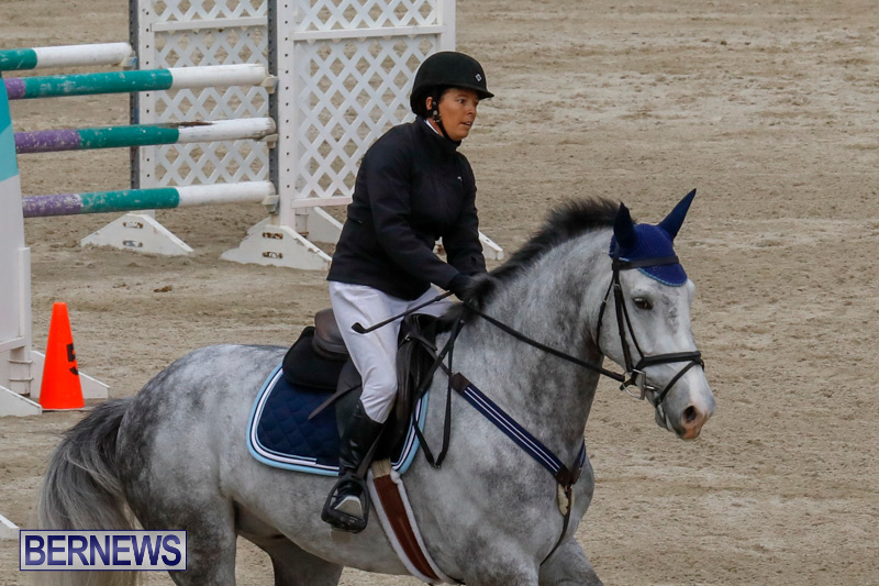 Bermuda-Equestrian-Federation-Stardust-Jumper-Series-February-3-2018-6904