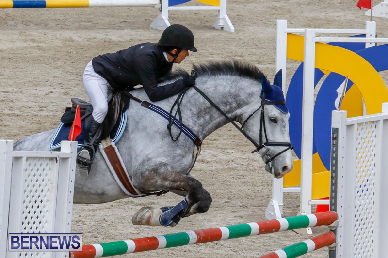Bermuda-Equestrian-Federation-Stardust-Jumper-Series-February-3-2018-6906
