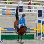 Bermuda Equestrian Federation Stardust Jumper Series, February 3 2018-6930