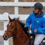 Bermuda Equestrian Federation Stardust Jumper Series, February 3 2018-6932