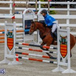Bermuda Equestrian Federation Stardust Jumper Series, February 3 2018-6935