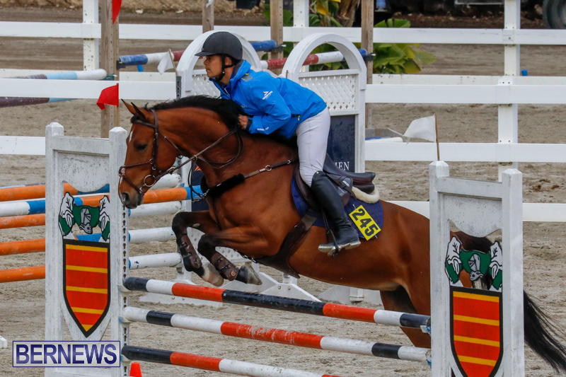 Bermuda-Equestrian-Federation-Stardust-Jumper-Series-February-3-2018-6936