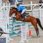 Bermuda Equestrian Federation Stardust Jumper Series, February 3 2018-6939