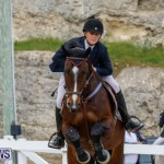Bermuda Equestrian Federation Stardust Jumper Series, February 3 2018-6969