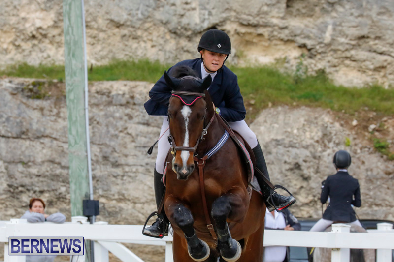 Bermuda-Equestrian-Federation-Stardust-Jumper-Series-February-3-2018-6969