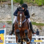 Bermuda Equestrian Federation Stardust Jumper Series, February 3 2018-6973
