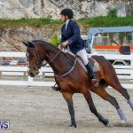 Bermuda Equestrian Federation Stardust Jumper Series, February 3 2018-6993