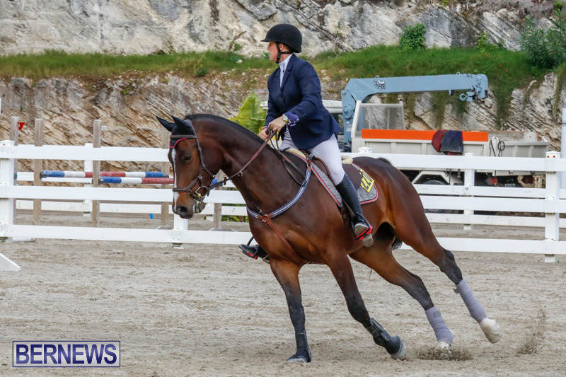 Bermuda-Equestrian-Federation-Stardust-Jumper-Series-February-3-2018-6993