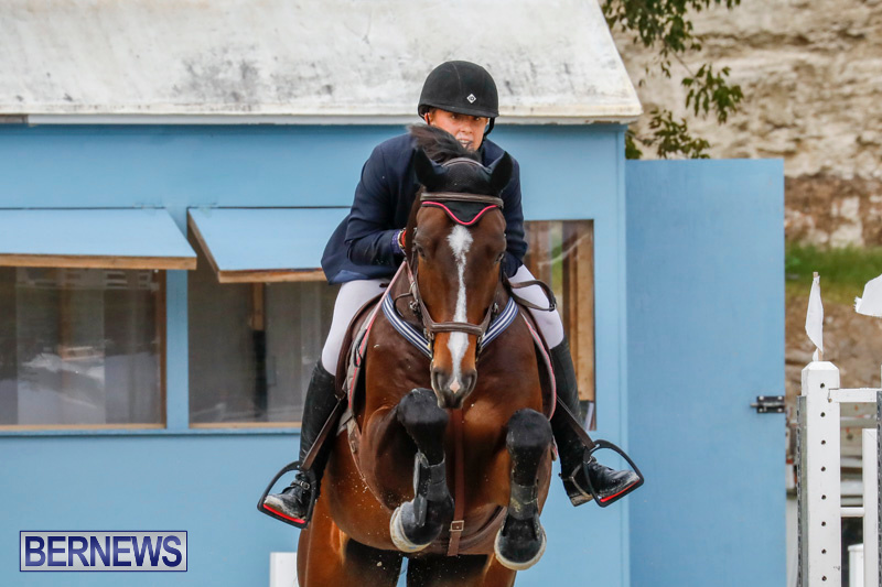 Bermuda-Equestrian-Federation-Stardust-Jumper-Series-February-3-2018-6995