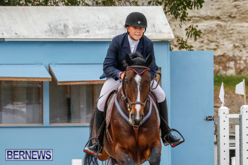 Bermuda-Equestrian-Federation-Stardust-Jumper-Series-February-3-2018-6996