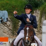 Bermuda Equestrian Federation Stardust Jumper Series, February 3 2018-7024