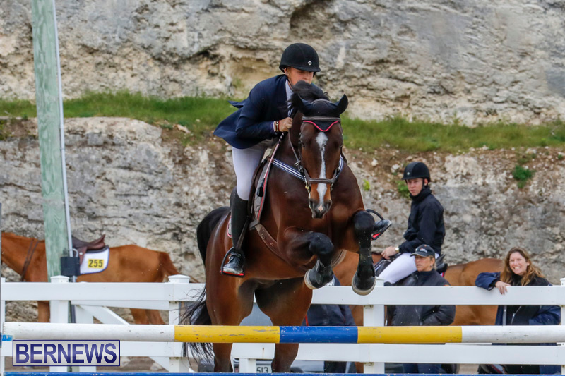 Bermuda-Equestrian-Federation-Stardust-Jumper-Series-February-3-2018-7254