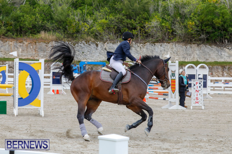 Bermuda-Equestrian-Federation-Stardust-Jumper-Series-February-3-2018-7264