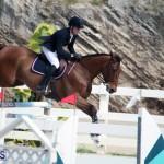 Equestrian Bermuda Feb 28 2018 (1)