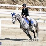 Equestrian Bermuda Feb 28 2018 (12)