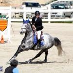 Equestrian Bermuda Feb 28 2018 (13)