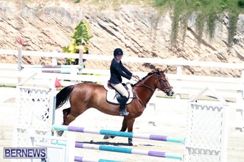 Equestrian-Bermuda-Feb-28-2018-18