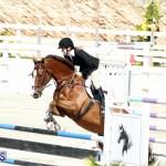 Equestrian Bermuda Feb 28 2018 (19)
