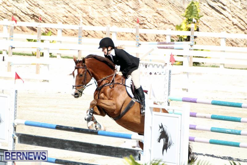 Equestrian-Bermuda-Feb-28-2018-19
