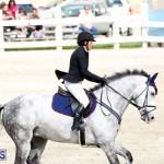 Equestrian Bermuda Feb 28 2018 (2)