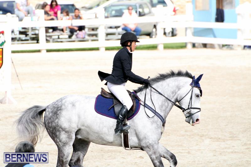 Equestrian-Bermuda-Feb-28-2018-2