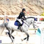 Equestrian Bermuda Feb 28 2018 (3)