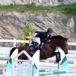 Equestrian Bermuda Feb 28 2018 (7)