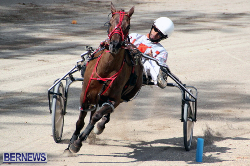 Harness-Pony-Racing-Bermuda-Feb-21-2018-2-10