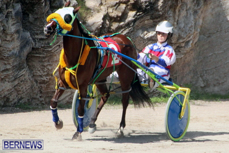 Harness-Pony-Racing-Bermuda-Feb-21-2018-2-12