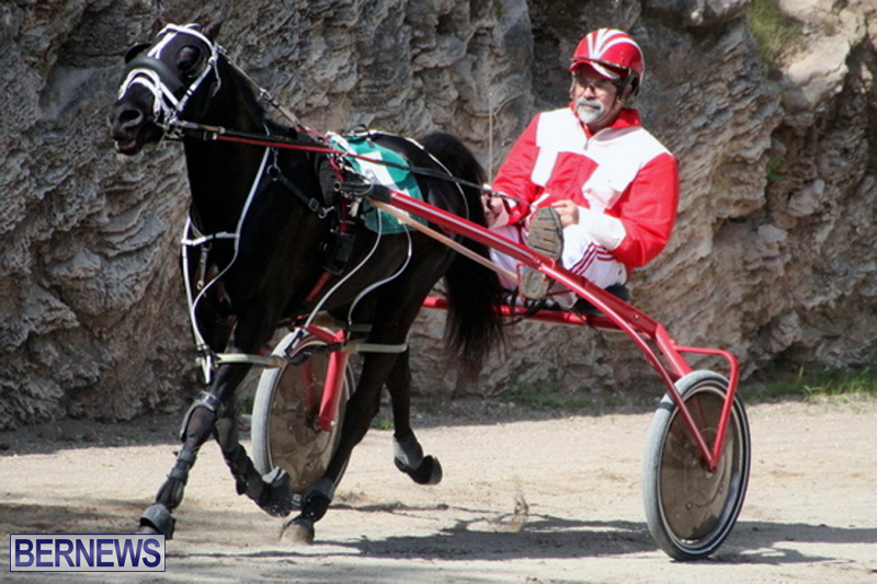 Harness-Pony-Racing-Bermuda-Feb-21-2018-2-13