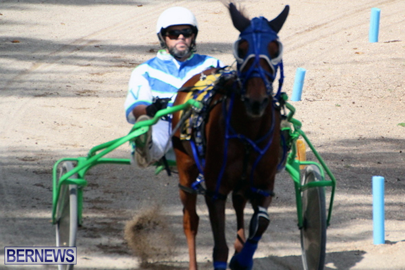 Harness-Pony-Racing-Bermuda-Feb-21-2018-2-18