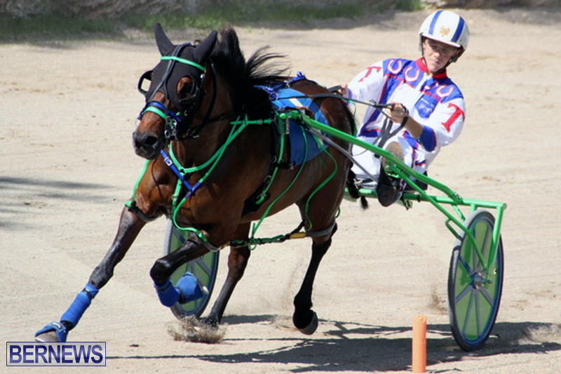 Harness-Pony-Racing-Bermuda-Feb-21-2018-2-19
